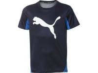 Puma Active Sports Cat Graphic,PEACOAT